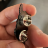 little hannya pins japanese fabio gargiulo